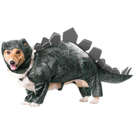 STEGOSAURUS DOG COSTUME: Your dog will definitely try to eat you in your sleep if you make him wear this. Never mind that the Stegosaurus was a plant eater. (View on Amazon.) / SL