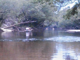 1600x1200 Blackwater shoals, in Alapaha River Outing, by John S. Quarterman, for WWALS.net, 24 August 2014