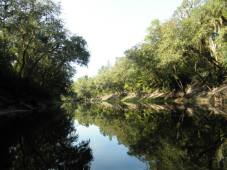 960x720 as always the reflections off the tannin stained waters were beautiful, in Alapaha, by Bret Wagenhorst, 1 September 2014