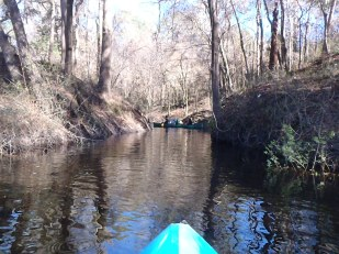 2048x1536 Side creek, in Alapaha River at Statenville, January 2014 WWALS Outing, by Gretchen Quarterman, 18 January 2014