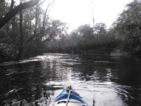 640x480 Dark ripples, in Statenville to Sasser Landing on the Alapaha River, by John S. Quarterman, for WWALS.net, 15 February 2015