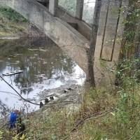 Hike to Spook Bridge 2017-11-11