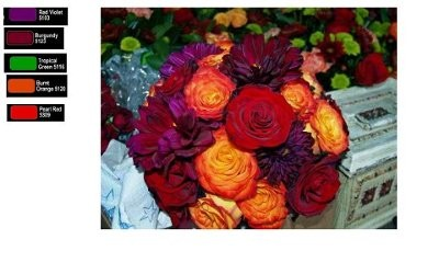 September Wedding Colors  Weddings Style and Decor Planning  Wedding Forums  WeddingWire