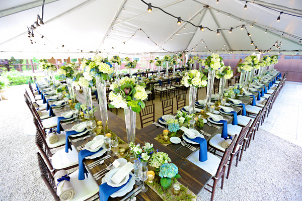 chair covers and linens indianapolis broyhill executive ace party rental - indianapolis, in wedding