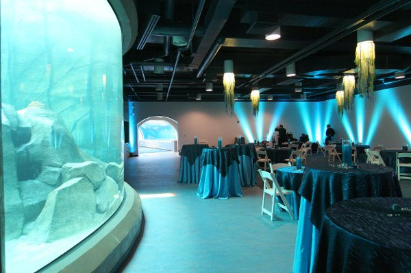 Pittsburgh Zoo  PPG Aquarium  Pittsburgh PA Wedding Venue