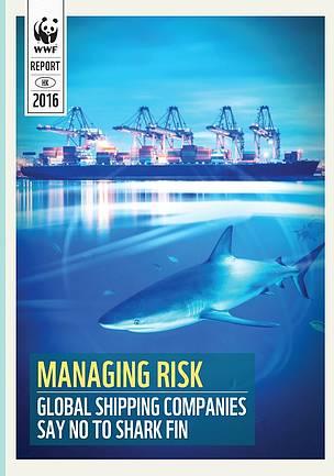 16間國際大型船公司承諾停運魚翅 世界自然基金會香港分會樂見船公司制定並執行「禁運魚翅」政策   WWF Hong Kong