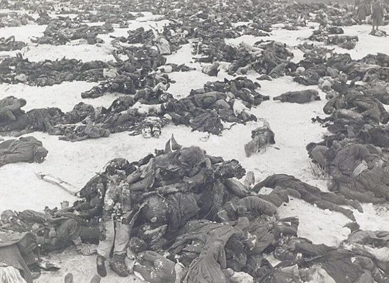 Тела немецких солдат на поле боя.