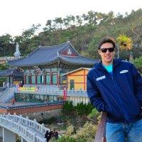 WILD ARROW IN BUSAN, SOUTH KOREA
