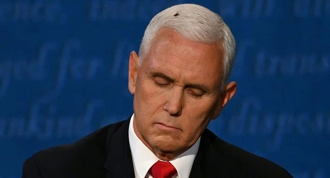 A fly rests on the head of US Vice President Mike Pence as he takes notes during the vice presidential debate against US Democratic vice presidential nominee and Senator from California Kamala Harris in Kingsbury Hall at the University of Utah on October 7, 2020, in Salt Lake City, Utah. (ERIC BARADAT / AFP )