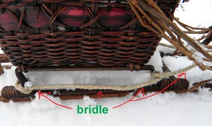 Sled showing bridle