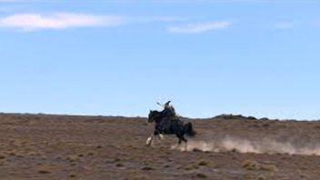 Gandalf on Big Nick riding through the Ruapehu Desert.