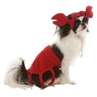 Crab Dog Costume | Jeffers Pet