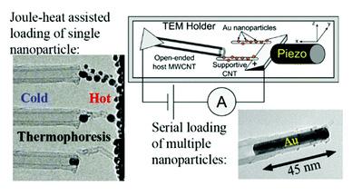 ナノチューブ先端に金属を充填する