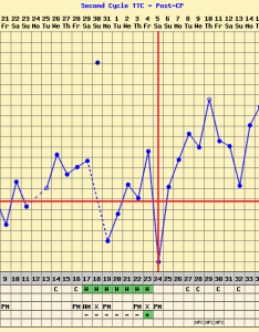 did my chart this cycle was  little wonky but had noticeble dip at dpo and got faint bfp the next day also charters you have an implantation rh boardsdingbee