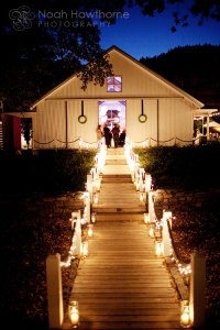 Night reception outdoors in May- need lighting ideas