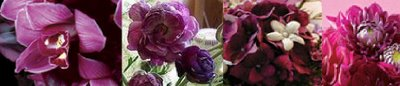 Bridal Bouquets :  wedding flowers Purple