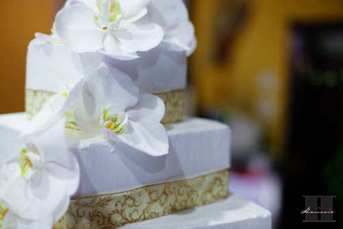 With This Wing: Cake Cutting :  wedding pictures pro pics recap san diego Recepti029 Recepti029