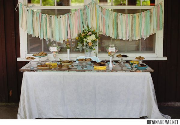 The Bunting Bash: Cookies for All :  wedding bloomington pictures pro pics recap Bree An0101 Bree-an010