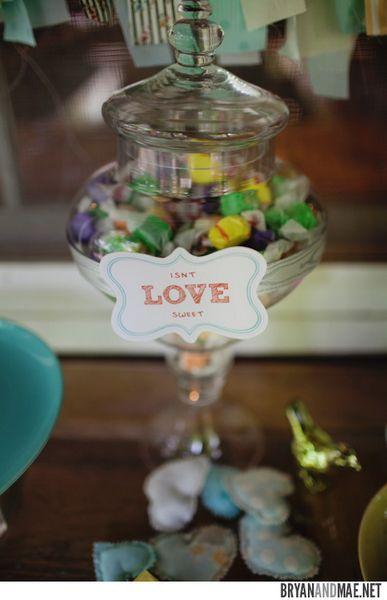 O Bash Bunting: Cookies para Todos: casamento bloomington fotos pro repescagem fotos Bree Bree An0181-an018