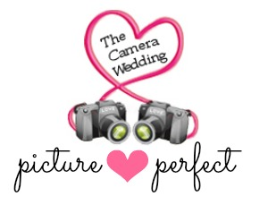 Picture Perfect: Buffalo Wings and Cake :  wedding cake charleston pictures recap Pictureperfect3 pictureperfect3