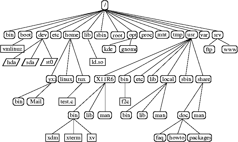 directory tree diagram 1975 harley davidson flh wiring introduction to bash excerpt from a standard