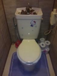 トイレのみずもれ