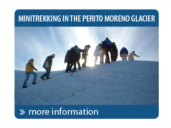 Minitrek on the Perito Moreno Glacier