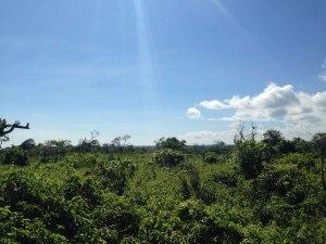 land-tambolaka-sumba-real-estate-3