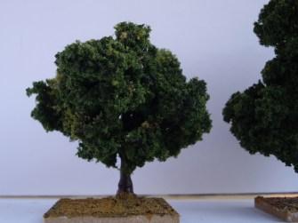 Done tree