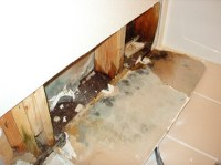 Water Damage | Orinda | CA | Wet Flooded Carpet