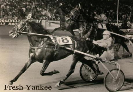 Joe O'Brien   Harness Horseman