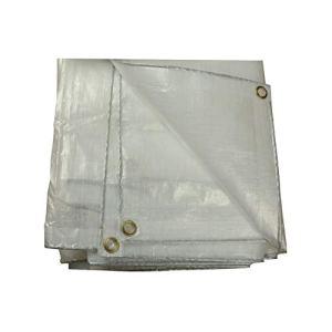 Bâche Clair Bâche Verre Transparent Bâche Transparent Bâche en Polyéthylène Pêche en Plein Air Camping Couvre-Sol 200g / M² Bâche De Protection (Color : Clear, Size : 3X4M)