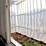QI-CHE-YI Bâche Transparente, Bord épaissi perforé imperméable à l'eau et la fenêtre du Panneau en Plastique Anti-âge Balcon Fleur Tente à Effet de Serre des Cultures,4x8m