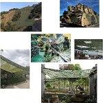YiDD Tarnnetze, Tarnnetze, Militärspiele, Jagdschießen, Sonnenschirm, Camping versteckte Sonnenschutznetze in Verschiedenen Größen und Ausführungen (Size : 5×10.4×32.8ft)