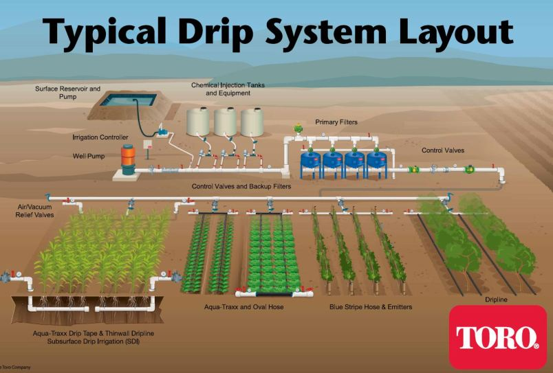 Typical Drip Irrigation System Layout