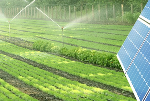 Solar Powered Irrigation System