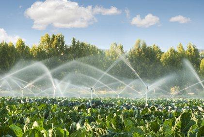 Pressurized Irrigation System