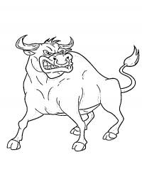 Bulls Color Pages Free Coloring Pages For You And Old