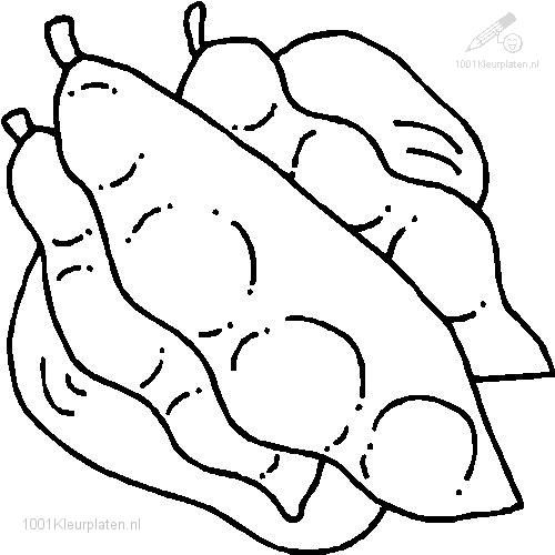 Free coloring pages of bean seeds