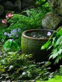 Secret Garden Water Bowl  1001 Gardens