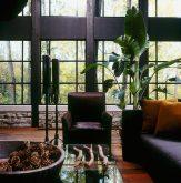 casa-floresta18