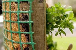 salad-vertical-garden-4