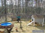 Geodesic-Chicken-Coop-12-1