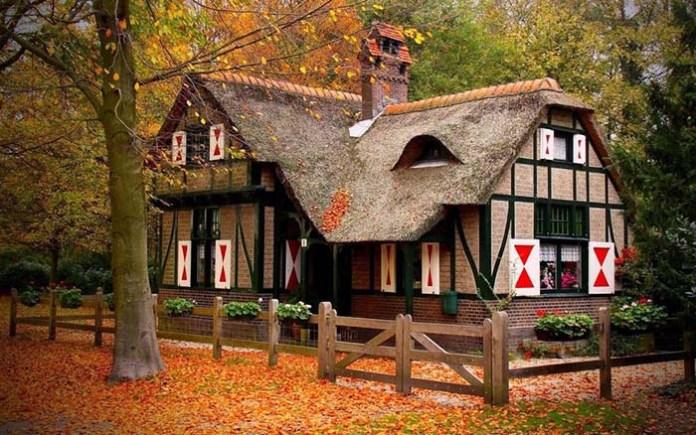 casa_floresta5
