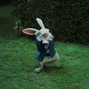 Top 10 bekendste konijnen