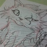 羽根猫描いた