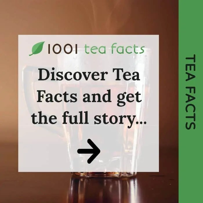 Discover Tea Facts
