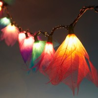 9Ft Tropical Flower Lights- 110V AC String Lights- Multi ...