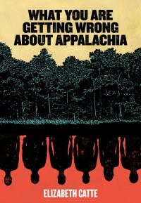 What You Are Getting Wrong About Appalachia book cover.