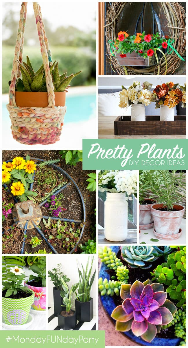 Pretty Plants - DIY decor Ideas